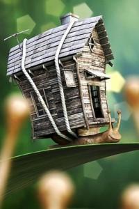 3d-creative-wallpaper-snail,640x960,iphone-4-wallpaper,5287