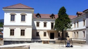 Andricev institut